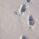 Footprints Blog