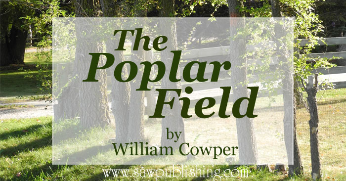 The Poplar Field