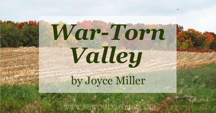 Are you looking for a great book to add to your history reading list? If you are studying the Civil War then you might want to get a copy of War-Torn Valley by Joyce Miller.