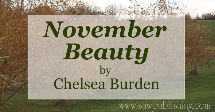"Why did I choose to title my poem ""November Beauty?"" When our heart is as grateful as it ought to be, we'll see everything as a blessing."