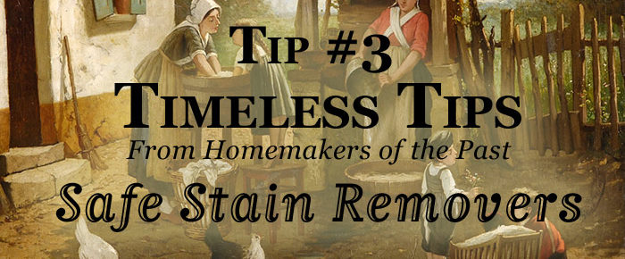 Are You Looking For Safe Stain Removers? – Timeless Tip #3