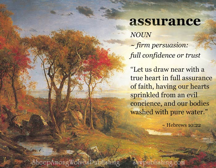 The Word of the Week Lesson #13 takes a look at Hebrews 10:22 as we explore the meaning of the word ASSURANCE.