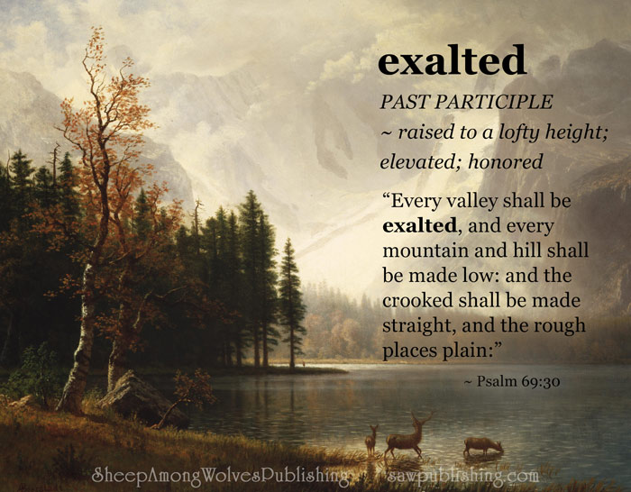 The Word of the Week Lesson #15 takes a look at Isaiah 40:4 as we explore the meaning of the word EXALTED.