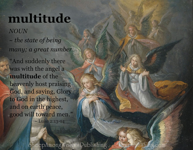 Word of the Week Lesson #17 - MULTITUDE