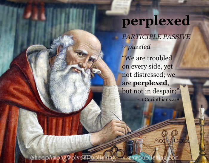 The Word of the Week Lesson #23 takes a look at 2 Corinthians 4:8 as we explore the meaning of the word PERPLEXED.