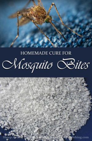As we plunge into the midst of another mosquito season, this week's Timeless Tip offers a chemical-free mosquito bite cure.