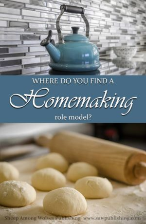 Have you ever felt like you desperately need a homemaking role model? Someone who is older, and wiser, and has done it all before? Timeless Tips from Homemakers of the Past offers a unique solution.