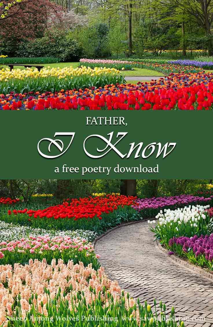 Do you find your highest aspirations lost in the everyday-ness of life? This FREE poetry download will challenge you to look at your daily world in a new and more beautiful way.