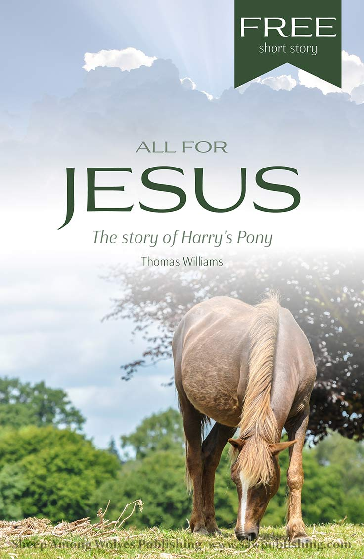 "When Harry decides to consecrate himself and everything he has to the Lord, he discovers that ""All for Jesus"" is a motto that reaches much further than missionaries and church offerings."