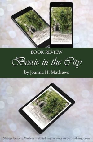 """Bessie in the City is the story of two New York girls who are wild to send a gift to the """"little log-cabin children"""" of the western frontier. Will they be able to earn the huge sum in time?"""